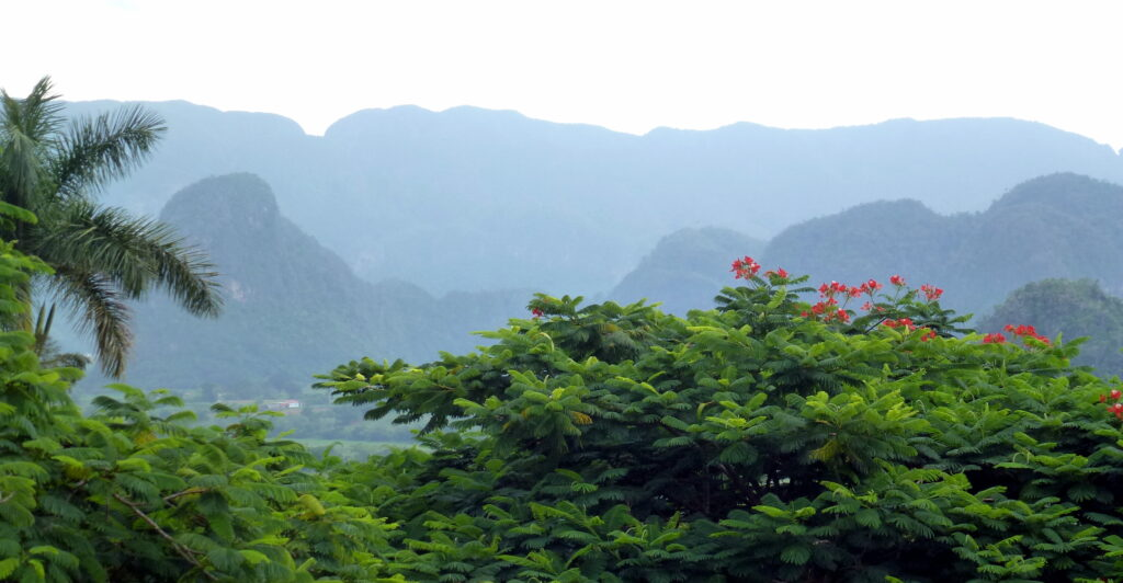 Mountains in Viñales-Cuba   Spanish translation services for the tourism industry
