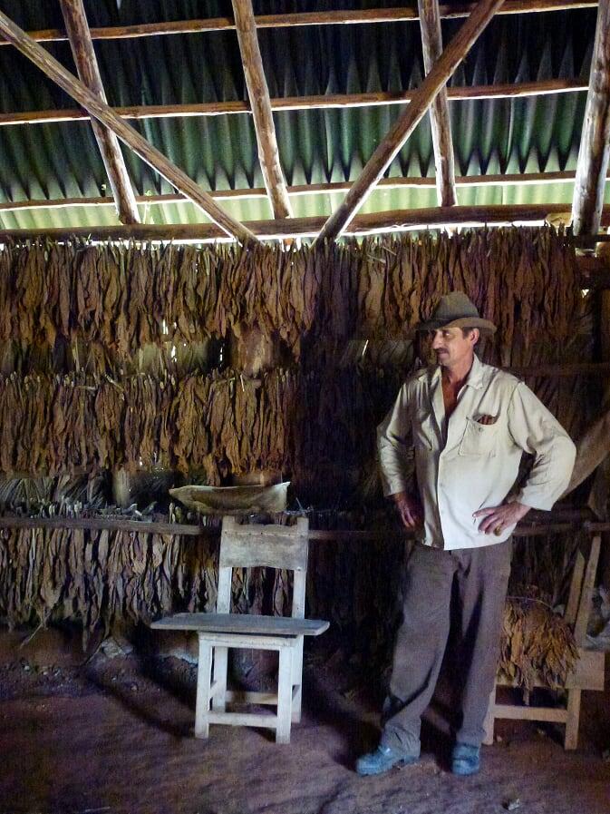 Tobacco shed | Viñales | Food Tourism translation services