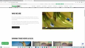 Banana Link web screenshot | Spanish translation service for corporate communications