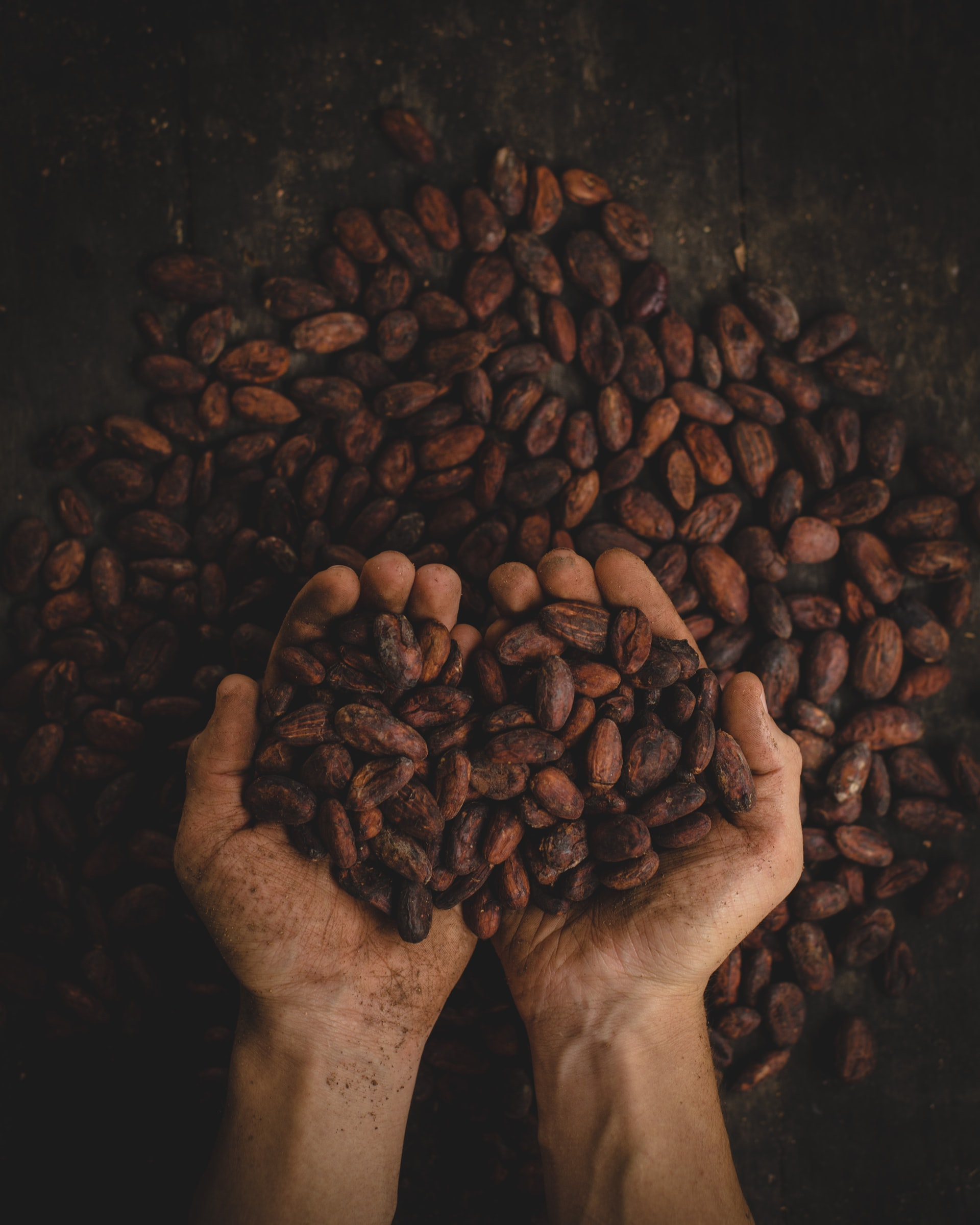 Read more about the article Cacao – One of my all time favourite nutrientes