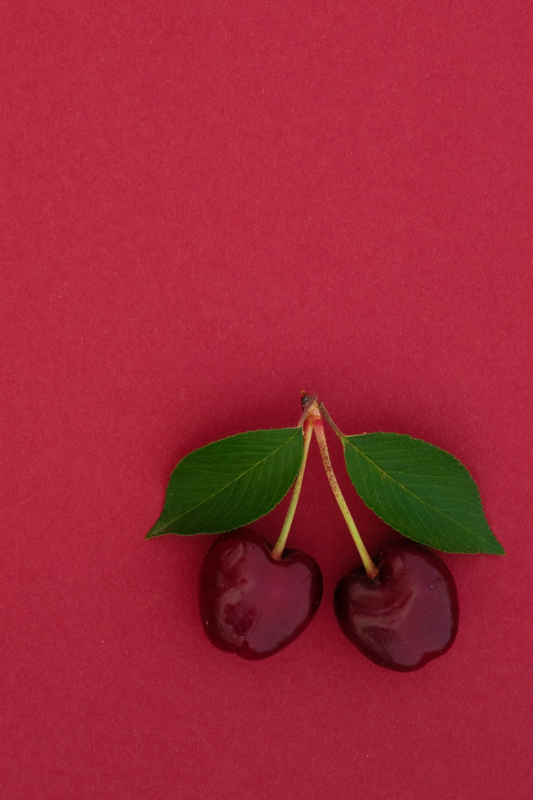 Read more about the article Cherries
