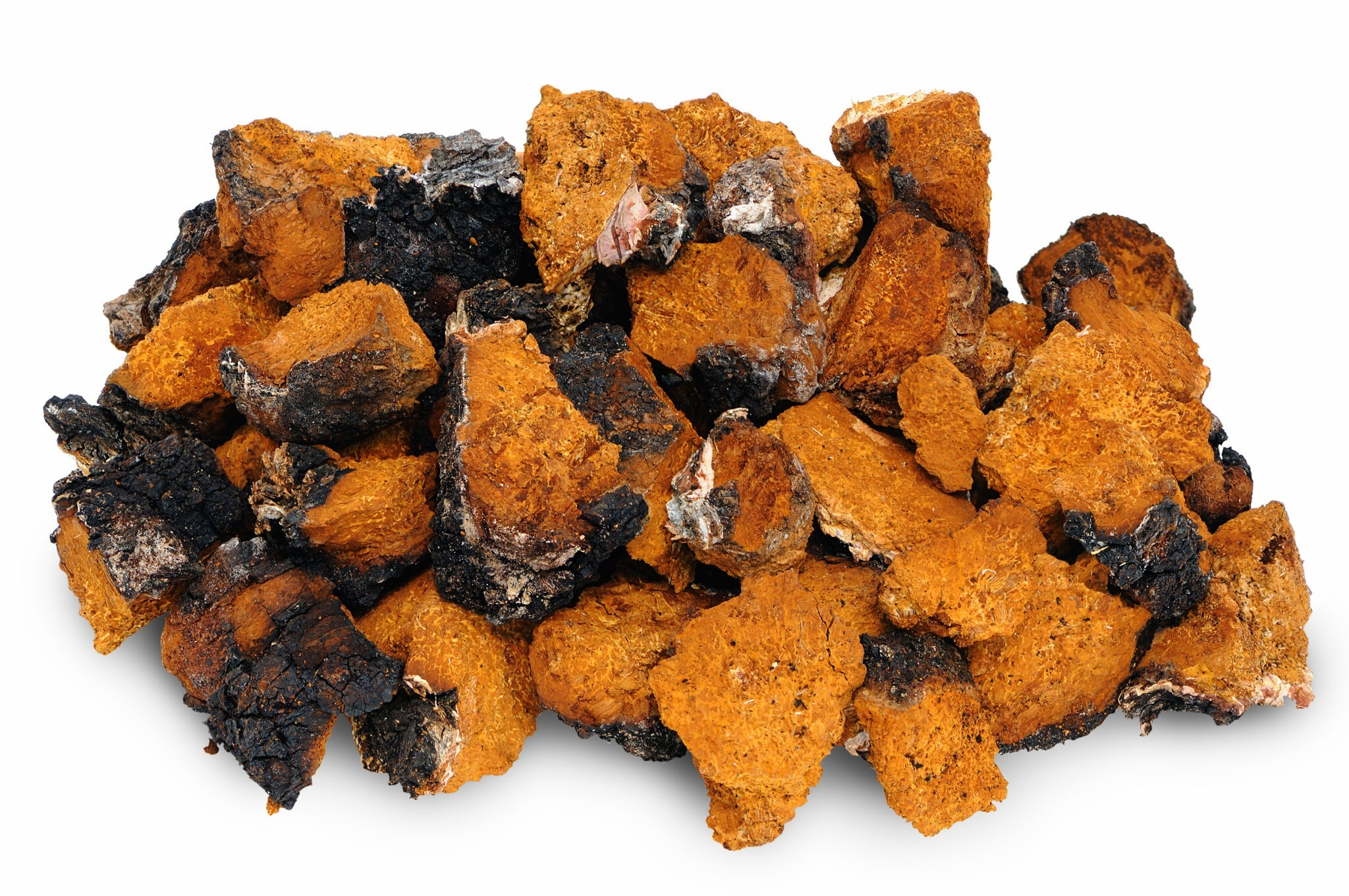chaga mushroom health benefits and side effects