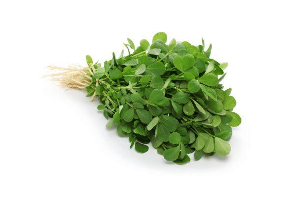 fenugreek leaves benefits