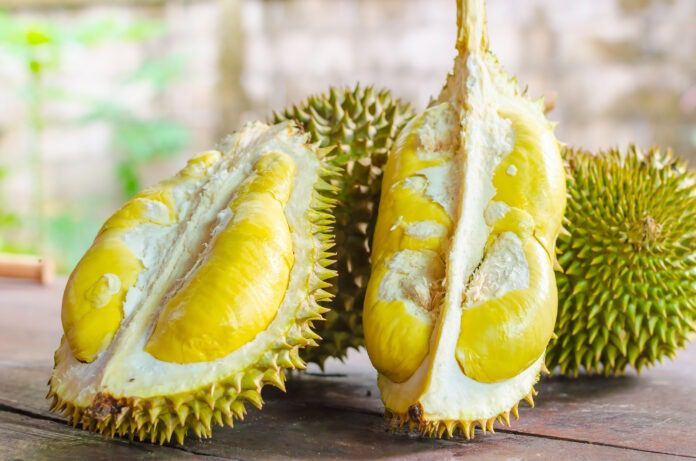 Durian vs. jackfruit