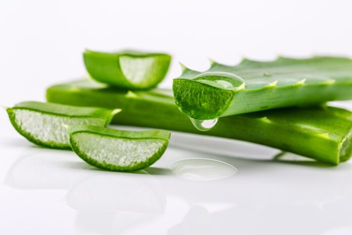 Is Aloe Vera good for skin