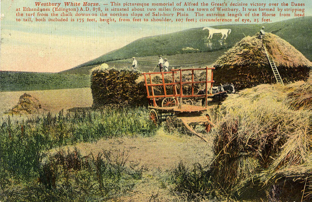 00126--w-horse-haymaking-- Horse Gallery