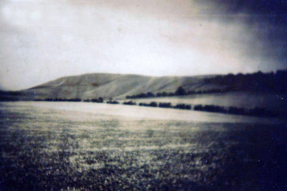 00226-WW2-White-Horse-- WW2 Gallery