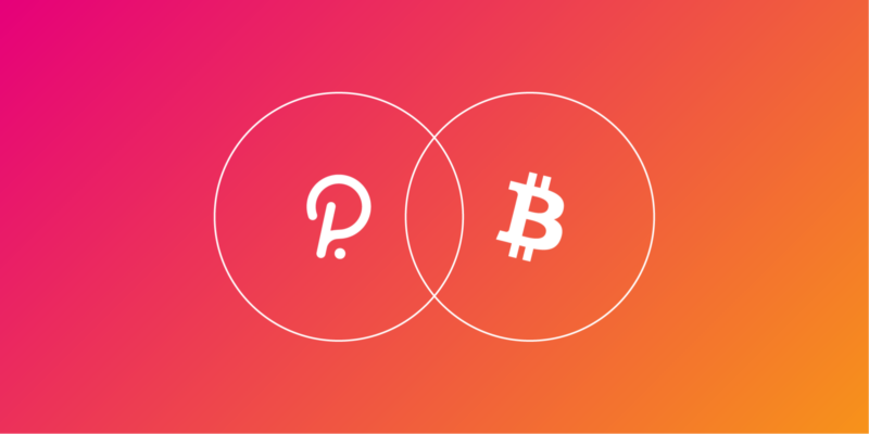 Polkadot Might Ignite a Defi Rally in 2021 With New PolkaBTC Product