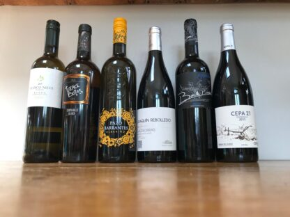 Image of 'Viva Espana' case of 12 mixed spanish wines