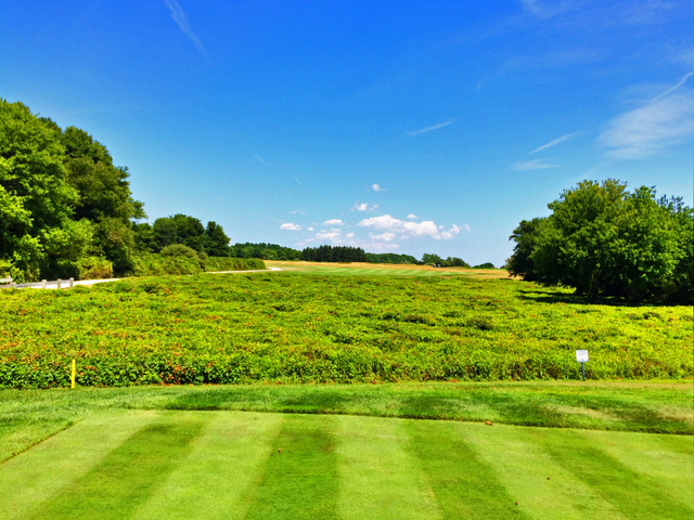 The Tee Shot On The Par-5 Opening Hole At Newport National Golf Club Goes Over An Environmentally Protected Area. (Mike Bailey/Golf Advisor)