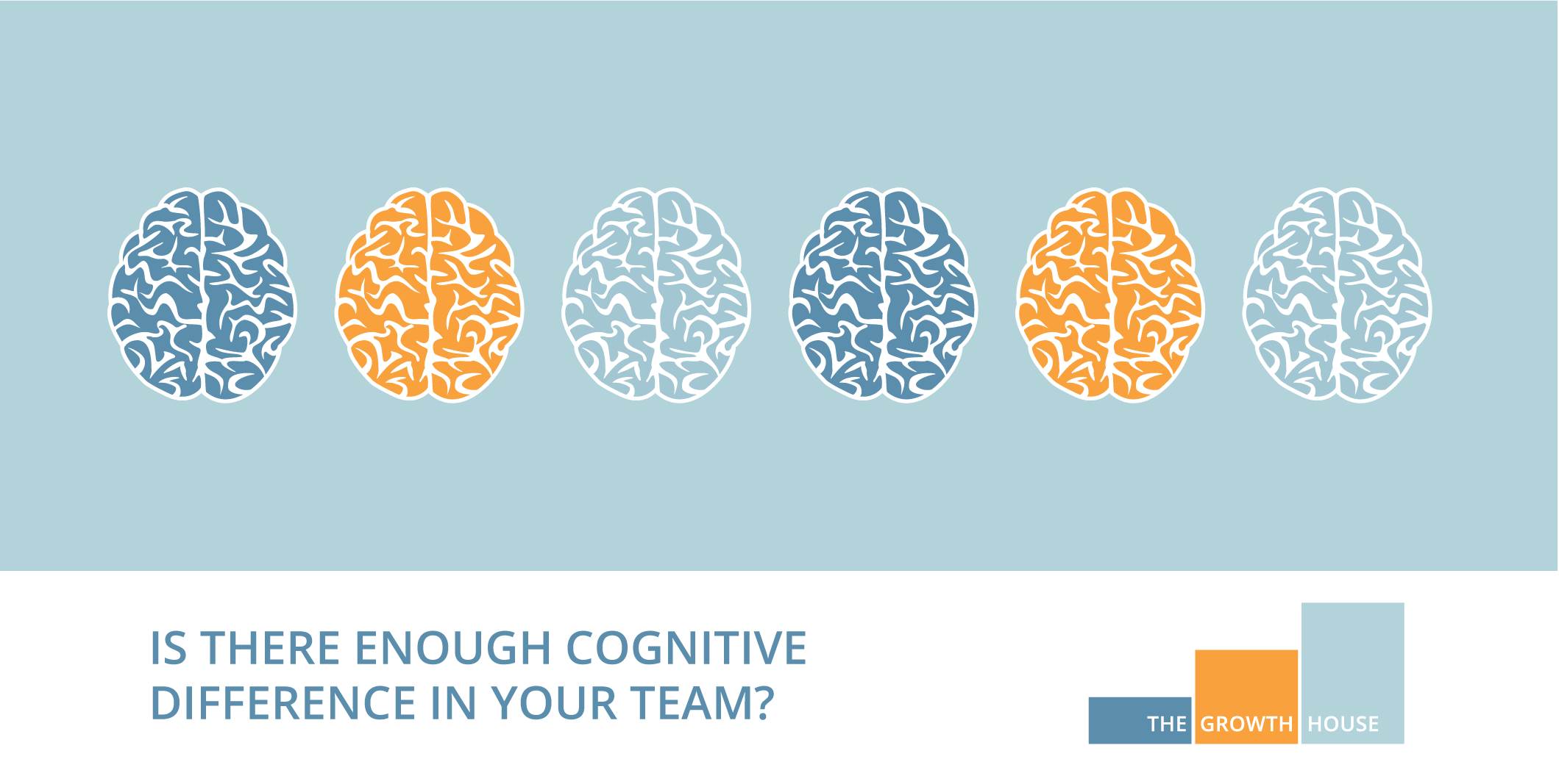 Is there enough cognitive difference in your team
