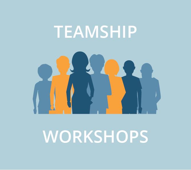 Remote Teamship Workshops