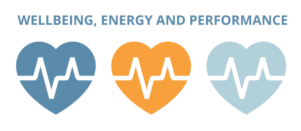 Wellbeing Energy Performance