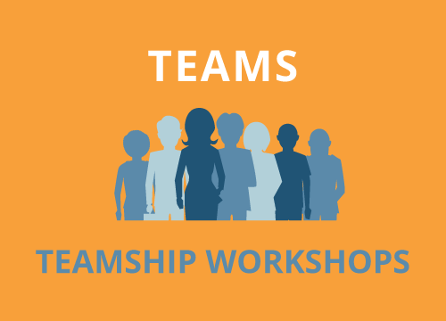 Teamship Workshops