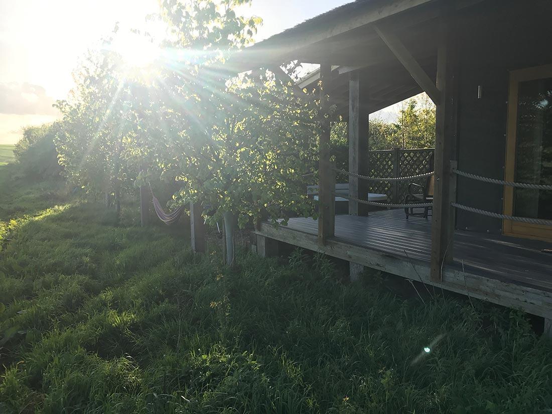 morning sun outside a lodge
