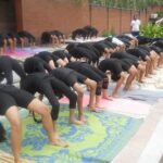 List of Best Yoga Poses to Reduce Belly Fat Quickly and Easily