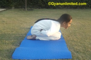 Frog pose yoga for flat stomach and belly fat