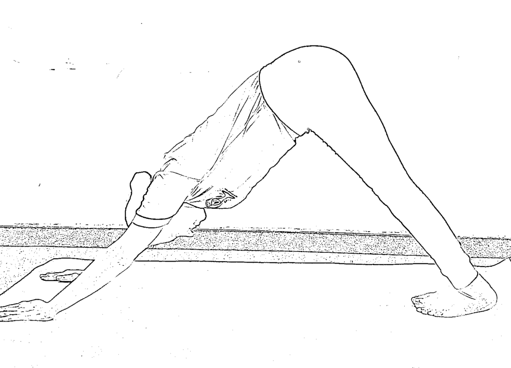 20 Amazing Health Benefits of Downward Facing Dog Yoga Pose for Hair, Skin and Health