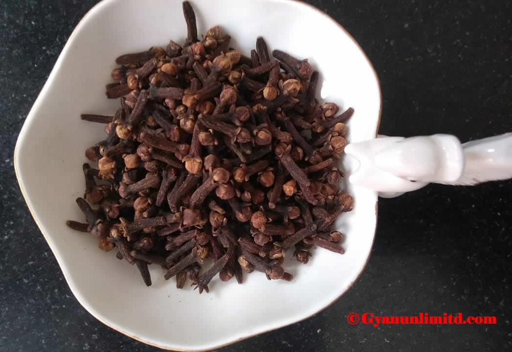 Cloves uses and benefits