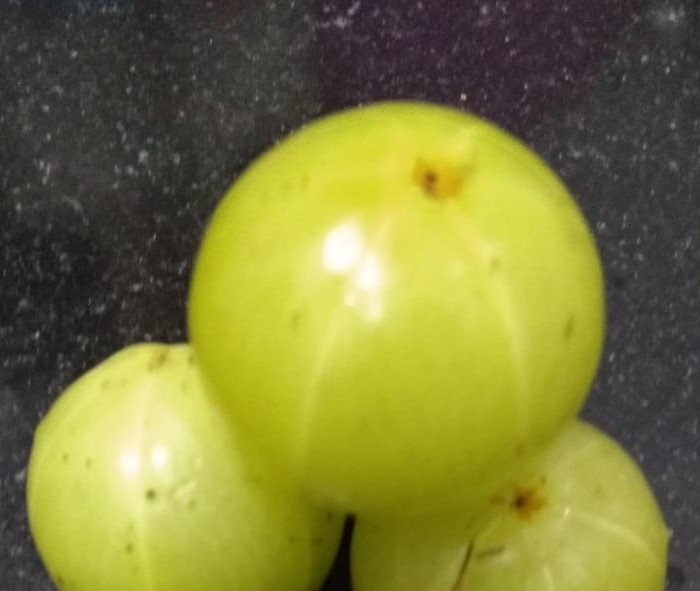 10 Wonder Benefits And Nutritional Facts Of Eating Amla (Phyllanthus emblica)