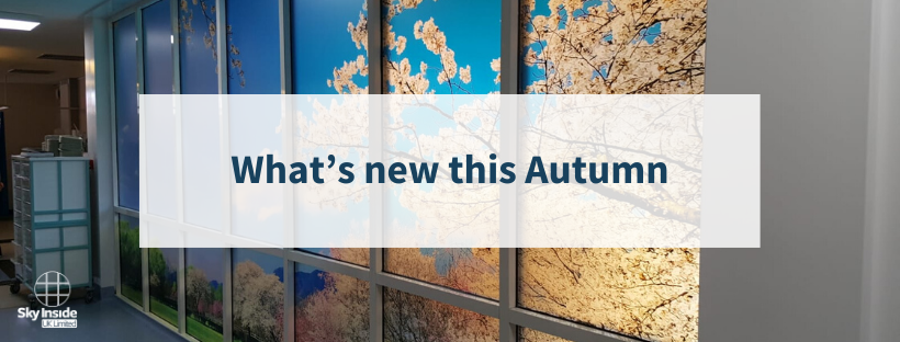 Blog banner with background of blossom wall art and text 'What's new this Autumn'