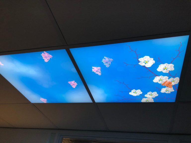 Sky lights