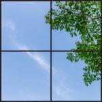 Green foliage window design