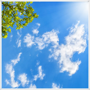Fake sky ceiling panel with blue sky, sunshine, wispy clouds and green leaves on twigs