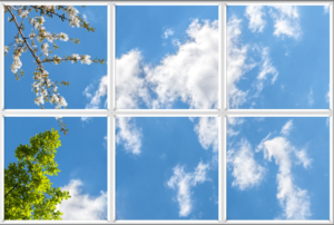 Series of sky panels with green leaves and blossom against a blue sky and cloudy background