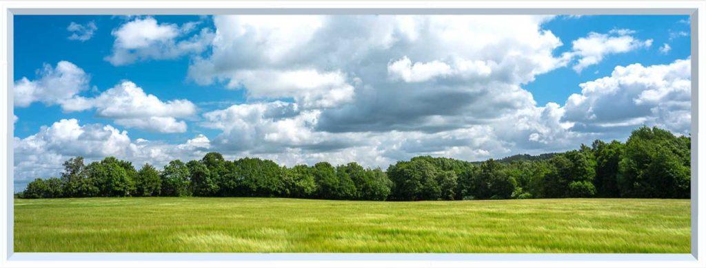 1 panel landscape window with green field under cloudy blue sky