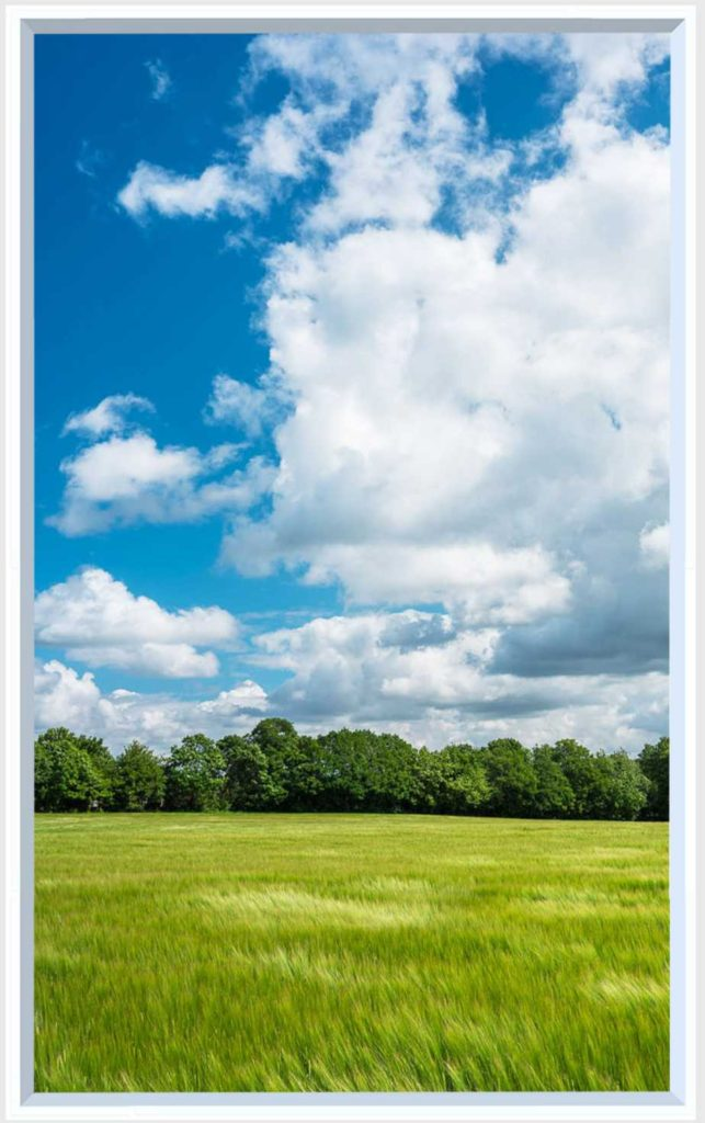 1 panel landscape window with green field under blue skies