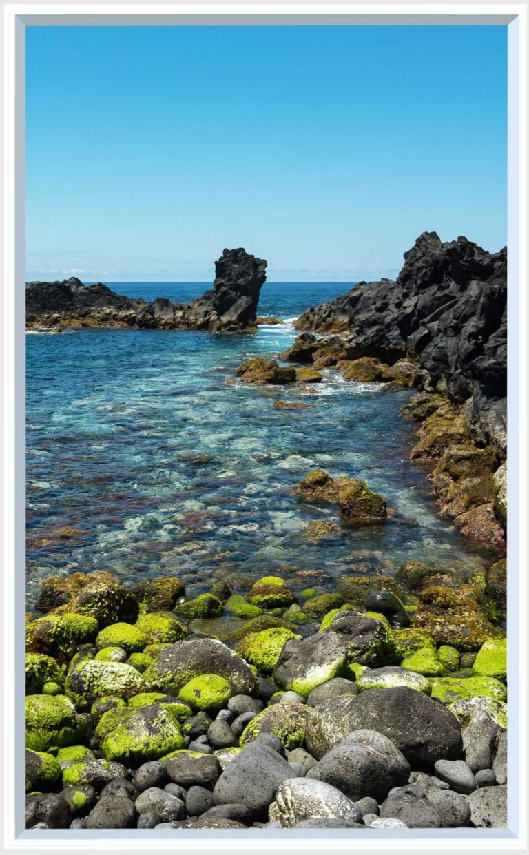 1 panel landscape window with rocky sea bay