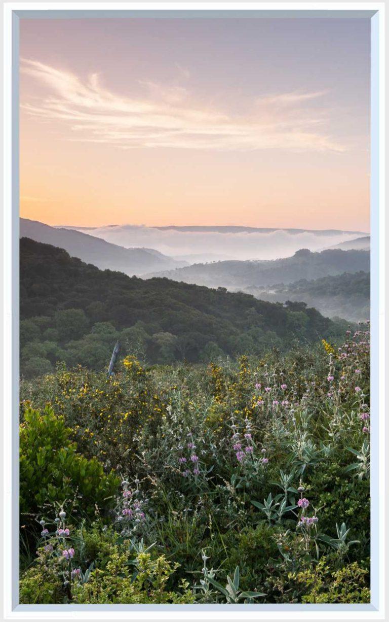 1 panel landscape window with hazy mountain sunset