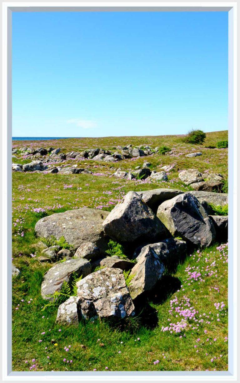 1 panel landscape window with rocks on hill
