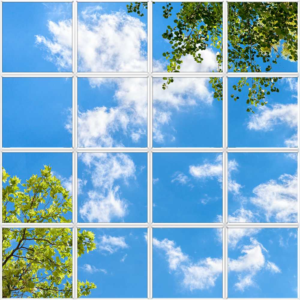 Square 16 panel window, with blue sky and green leaves