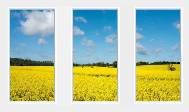 3 panel landscape window with yellow field under blue sky
