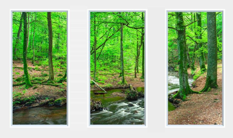 3 panel landscape window with green forest and stream
