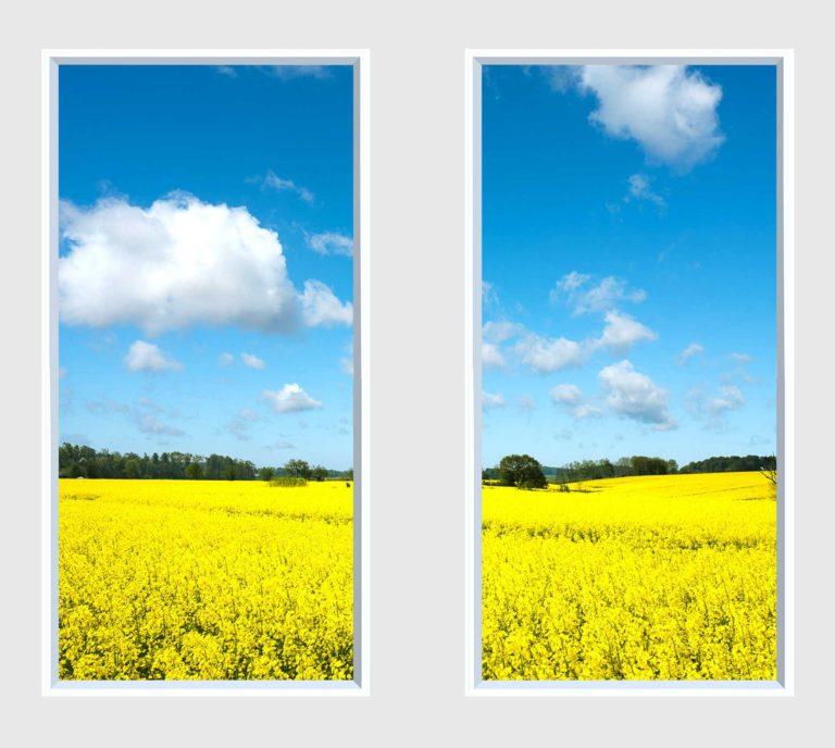 2 panel landscape window with yellow field under blue sky