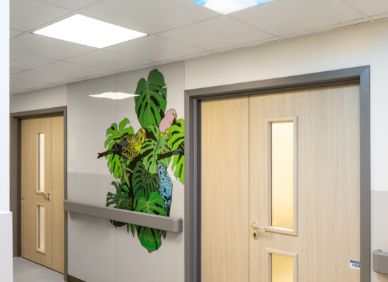 Empty corridor with two doors, a colourful mural with leaves and birds on the wall, and a digital window on the ceiling showing blue skies and pink blossom