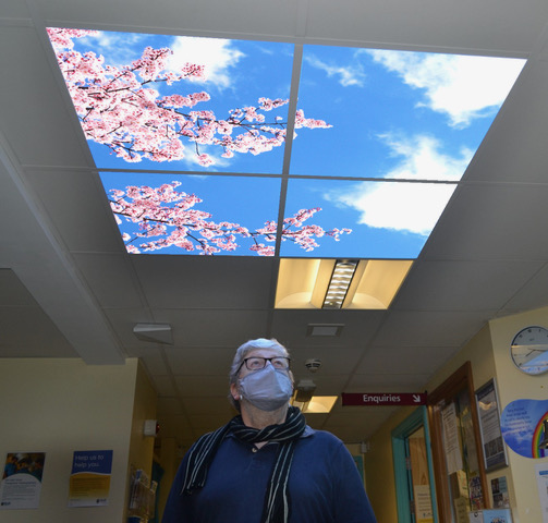 The Managing Director wearing a face mask, glasses and a scarf looking up at a 4-panel sky ceiling with blue skies, clouds and pink blossoms