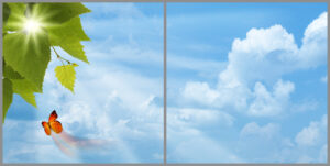 Kids 2-panel window with light blue skies, white clouds, large green leaves with sun shining through and a flying orange butterfly