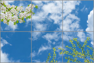 6-panel window with blue skies, white clouds and twigs with green leaves and white flowers