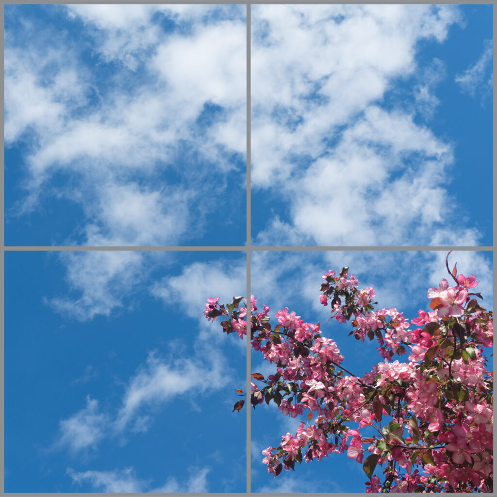 4-panel window with blue skies, white clouds and pink flowers on branches