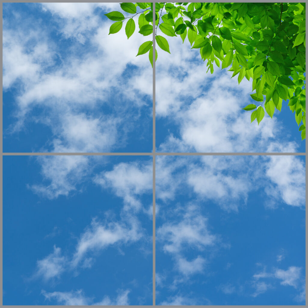 4-panel window with blue skies, white clouds and lush green leaves on twigs