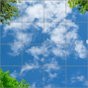 16-panel window with blue skies, white clouds and three corners with twigs full of bright green leaves