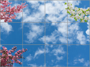 12-panel window with blue skies, white clouds and branches with white or pink flowers