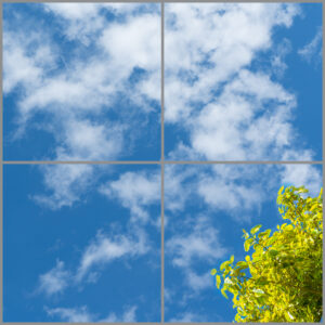 4-panel window with blue skies, white clouds and green and yellow leaves