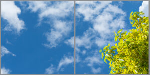 2-panel window with blue skies, white clouds and green and yellow leaves