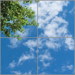 4-panel window with blue skies, white clouds and green leaves on branches