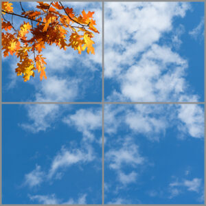 4-panel window with blue skies, white clouds and orange autumn leaves